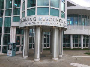 Raymond F Damato Library